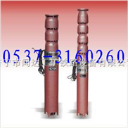 QJR系列热水潜水电泵