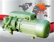 XD型单级旋片式真空泵,单级真空泵,旋片式真空泵,卧式真空泵