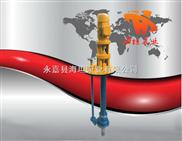 FY系列不銹鋼液下泵, 耐腐蝕液下泵,液下化工泵