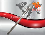 YBYB型手提式电动油桶泵,手提式油桶泵,电动油桶泵,防爆油桶泵