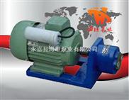 S型微型齿轮输油泵,微型输油泵,齿轮油泵,微型齿轮泵