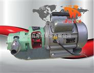 WCB型微型齒輪油泵,不銹鋼齒輪泵,微型齒輪泵,手提式油泵
