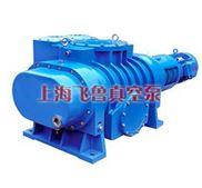 ZJP型罗茨真空泵(上海真空泵厂家、型号、原理、结构)