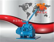 BS-25型便攜式手搖泵,手搖油泵,手搖水泵
