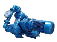 电动隔膜泵,DBY-100型电动隔膜泵,上海电动隔膜泵厂家