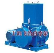 上海H滑閥式真空泵