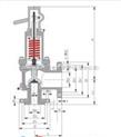 安全閥 MWA44C安全閥 美標波紋管安全閥