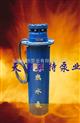 热水潜水泵