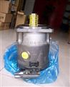 PVV21小型真空抽氣泵