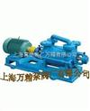 2SK-2SK水環真空泵