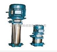 DAS型除磷泵