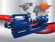 真空泵原理,真空泵性能,2SK系列两级水环式真空泵