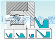 进口V形圈(VA、VS、VL、LX、RM、VB、AX)