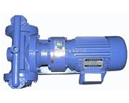 DBY型电动隔膜泵生产厂家,价格,结构图