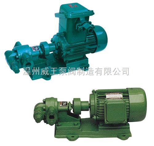 威王KCB、2CY型齿轮油泵生产厂家,价格