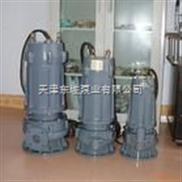 小流量潜水泵/大流量潜水泵/德国里茨电泵/低扬程潜水泵/耐磨潜水泵/天津深井潜水泵