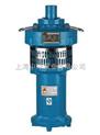 潜水泵,QY40-12-2.2充油式潜水泵,QY25-17-2.2不锈钢潜水泵