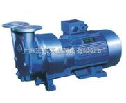 供應SKA系列水環式真空泵