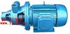 漩涡泵厂家:1W型单级漩涡泵